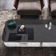 图片 BIPLANE Coffee Table