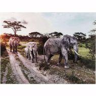 Image sur Elefant Family Glass