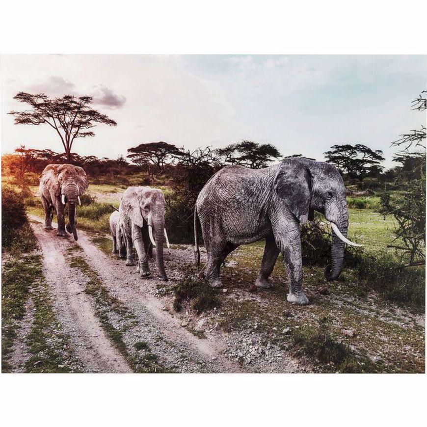 图片 Elefant Family Glass