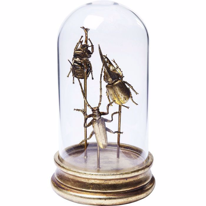 Image sur Insects Tre