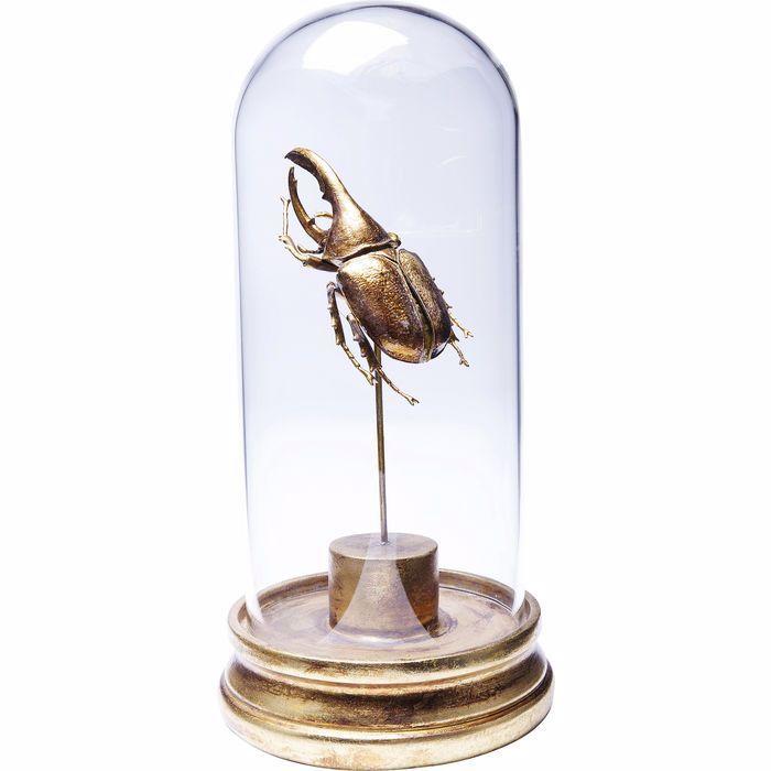 图片 Insect Uno