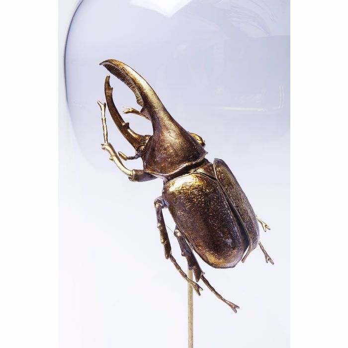 Picture of Insect Uno