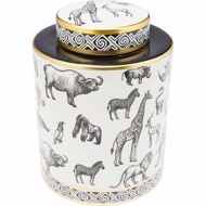 图片 Animals Jar