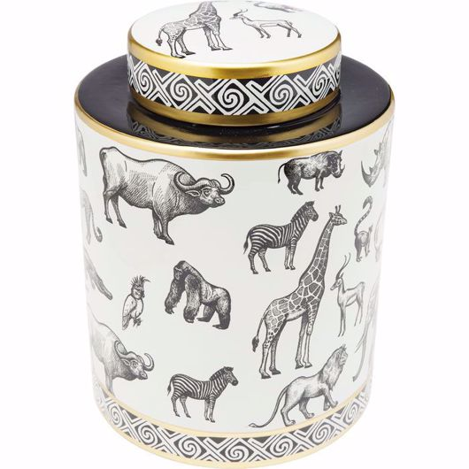 Image de Animals Jar