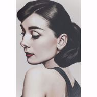 图片 Audrey Picture