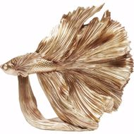 图片 Gold Betta Fish - Small
