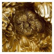 图片 Peony Wall Decoration - Gold