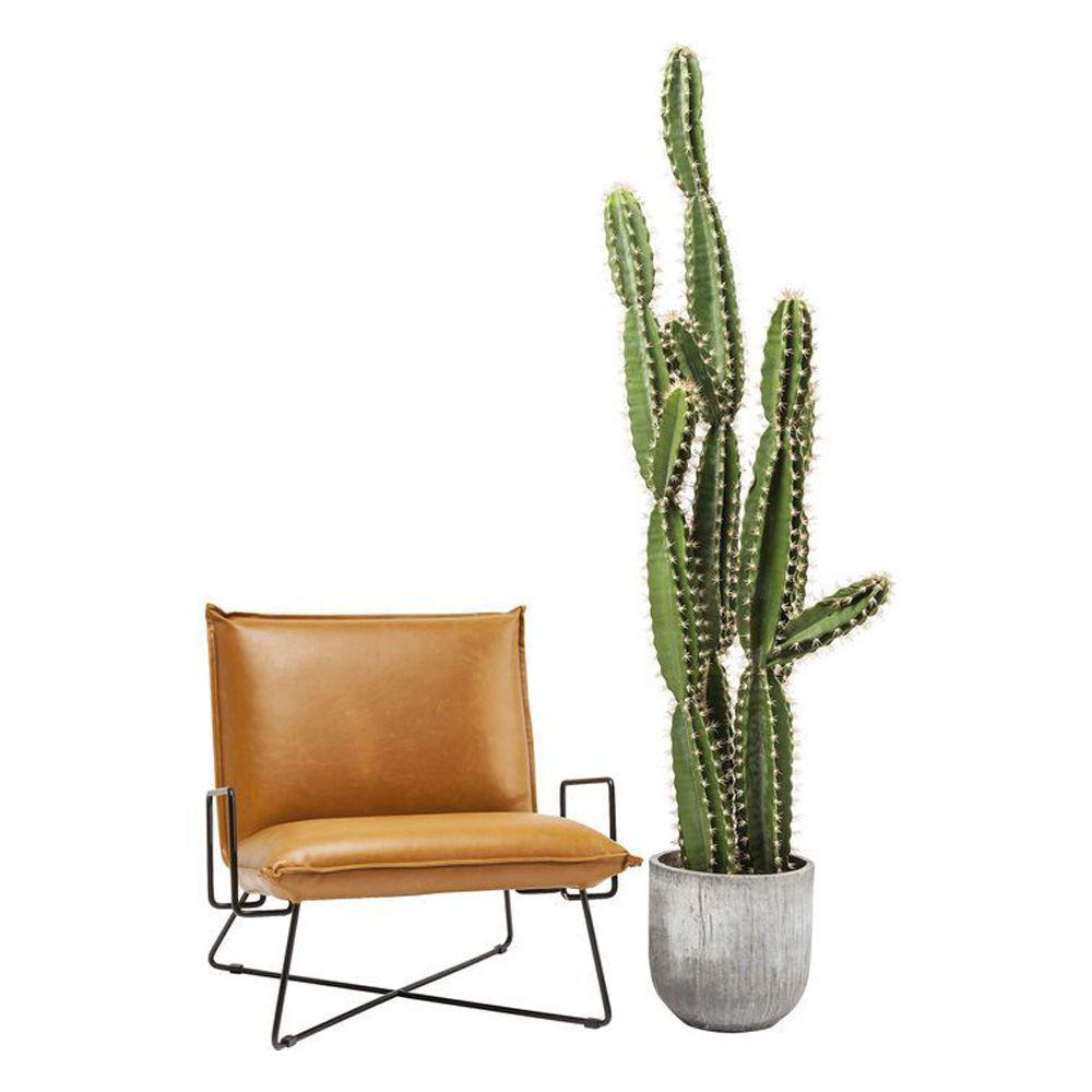 Image sur Cactus Pot Deco Plant 202